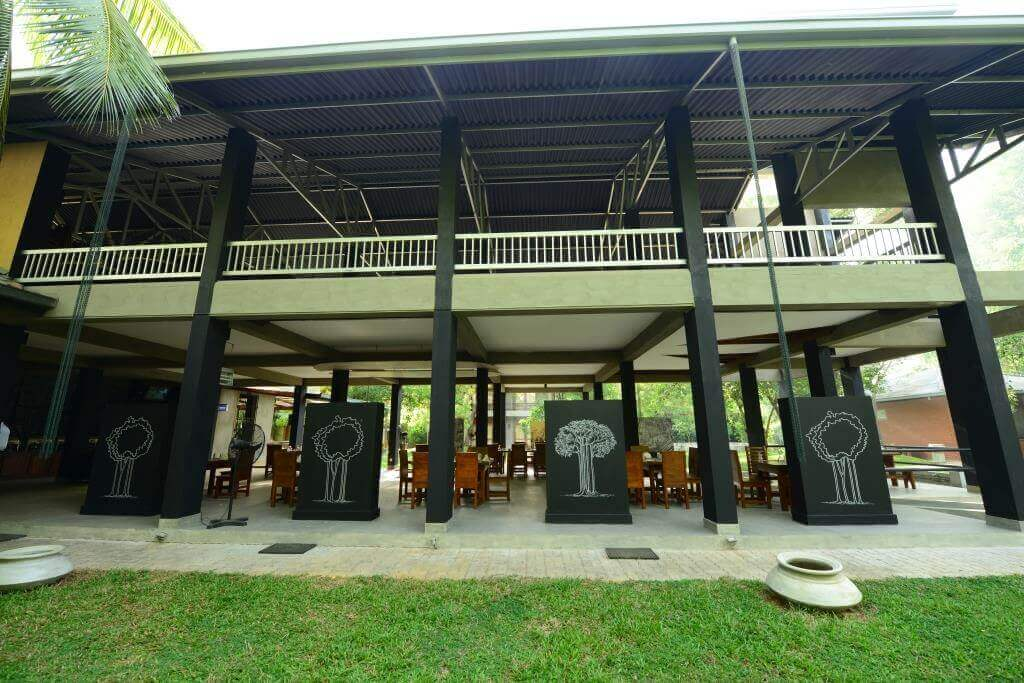 udawalawe hotels - Udawalawa hotel nildiyamankada - Courtyard